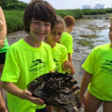 Marine Science Camp Grades: K-8th