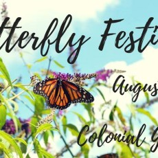 Things to do in Eastern Main Line, PA for Kids: Butterfly Festival, Colonial Gardens