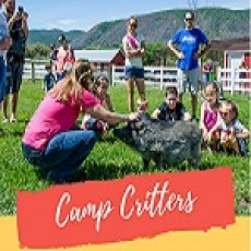 """""""CAMP CRITTERS"""""""