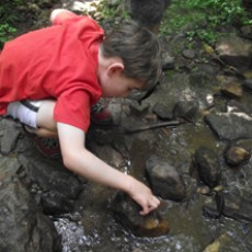 Things to do in Milford Mill-Reisterstown, MD for Kids: Stream Searchin', Irvine Nature Center
