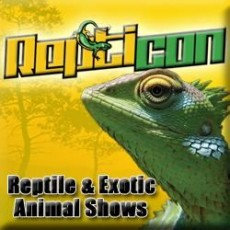 Wesley Chapel-Lutz, FL Events for Kids: Repticon Tampa Reptile & Exotic Animal Show
