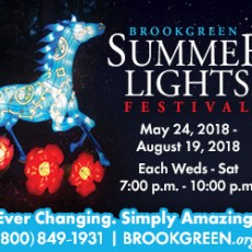 BROOKGREEN SUMMER LIGHTS FESTIVAL