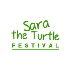 Things to do in Cape May County, NJ: Sara the Turtle Festival