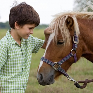 Serenity Stables: Kids Horse Camp