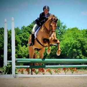 Columbia Equestrian Center: Virtual Pony Visit