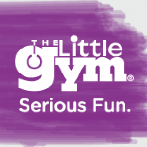 The Little Gym of Mt Pleasant