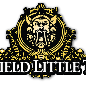 Springfield Little Theatre: Summer Stages Day Camps - Themes Vary Weekly