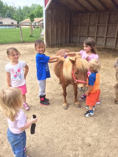 Birthday Parties on the Farm