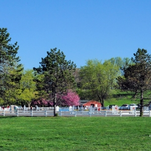 Things To Do With Kids In Malvern Pa