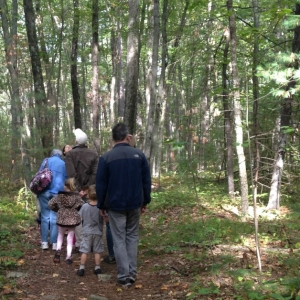 Leominster-Lancaster, MA Events for Kids: Backyard and Beyond: Tree ID Walk