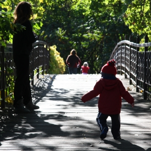 Things to do in Madison, WI: Toddler Story & Strolls: The Lorax