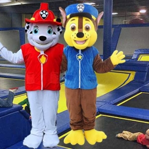 Hulafrog   Toddler Jump with Paw Patrol- Marshall and Chase