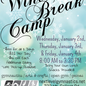 Things to do in Rock Hill, SC for Kids: Winter Break Camp!, Next Level Gymnastics Academy