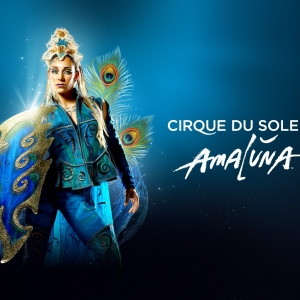 Things to do in Long Beach, CA: Cirque du Soleil AMALUNA