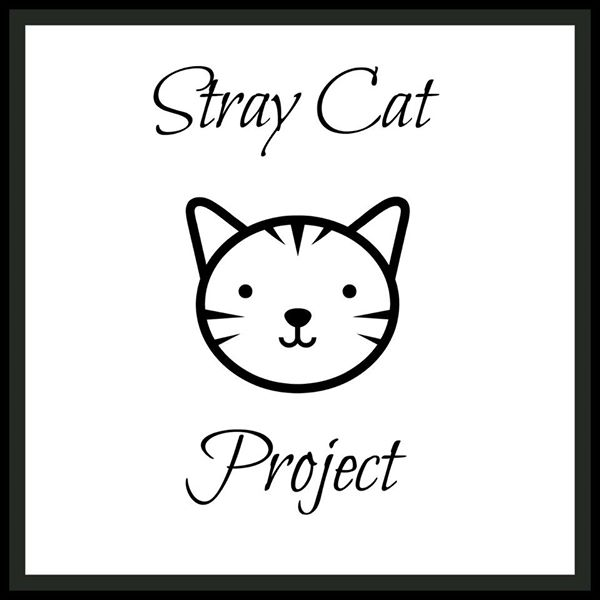 Stray Cat Project