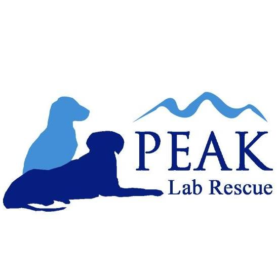 Peak Lab Rescue