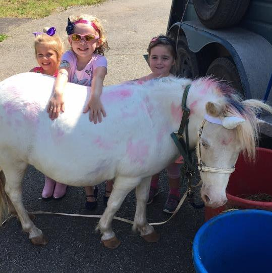 Paint a Pony Party