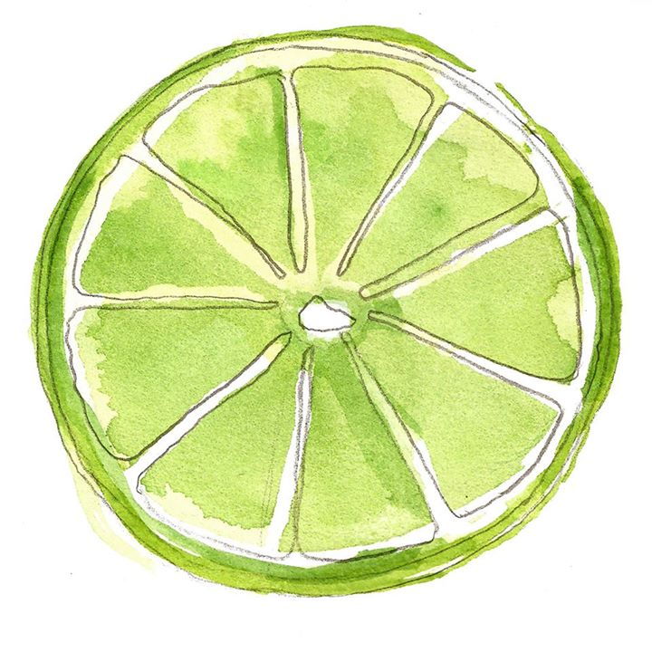 Slice of Lime Photography