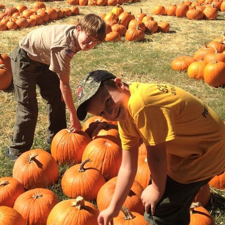 Boy Scout Troop 435 Pumpkin Patch