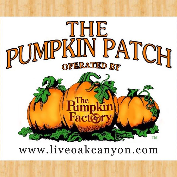 Live Oak Canyon Pumpkin Patch and Christmas Tree Farm