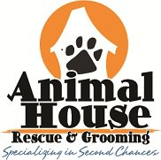 Uniting homeless animals with families
