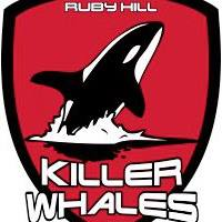 Ruby Hill Killer Whales