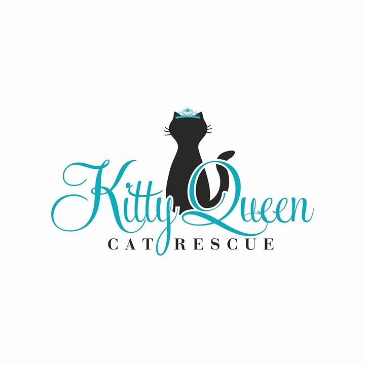 Kitty Queen Cat Rescue: G = Give Back