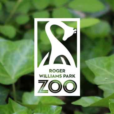 Roger Williams Park Zoo & Carousel Village: Zoo Adventures